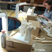 Anatomical wax reconstruction workshop. Shoulder joint Shoulder joint. Medical art, Medical Artists' Education Trust. Catherine Sulzmann